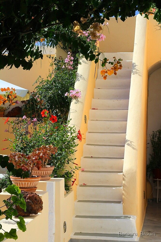 Courtyard Stairs by Barbara  Brown