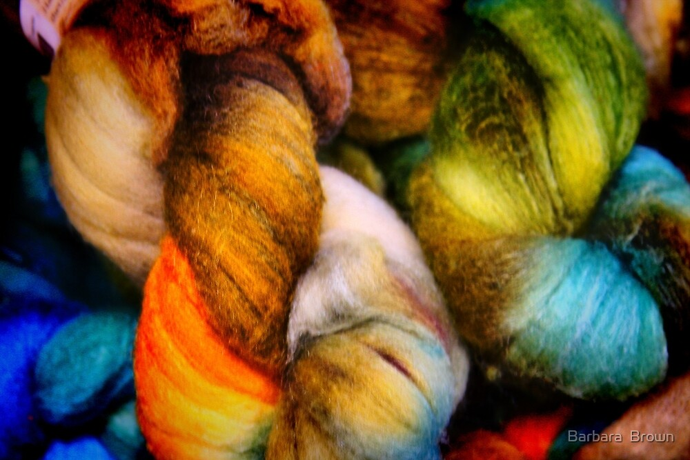 Dyed in the Wool by Barbara  Brown