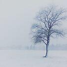 First Snow by Angela King-Jones