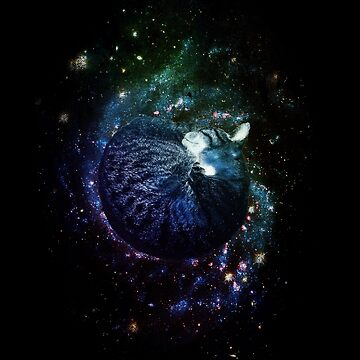 Spiral Meow Galaxy by starrygazer