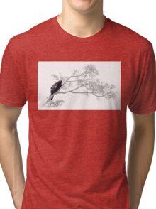 Wedge-tail Eagle Tri-blend T-Shirt
