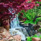 Hidden Waterfall by TaiChiJohn