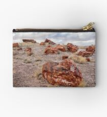Petrified Forest Studio Pouch