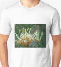 scrolls Unisex T-Shirt