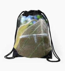 Plume Moth - Dorrigo National Park, New South Wales Drawstring Bag