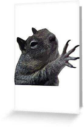 Plzzzzz Squirrel by Steve Nahaj