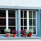Window of St Gallen by Sue Knowles
