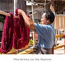 Lotus fiber worker, Burma by Jacinthe Brault