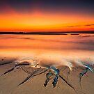 Cape Cod National Seashore Sunrise by Artist Dapixara