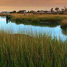Marches Of Duck Creek Wellfleet Cape Cod by Artist Dapixara