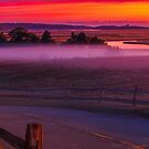Sunrise On Skiff Hill Cape Cod by Artist Dapixara