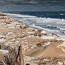 Cape Cod National Seashore Winter by Artist Dapixara
