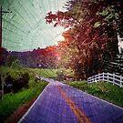 North Carolina by Savannah Gibbs