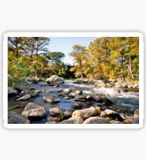 Guadalupe River Sticker