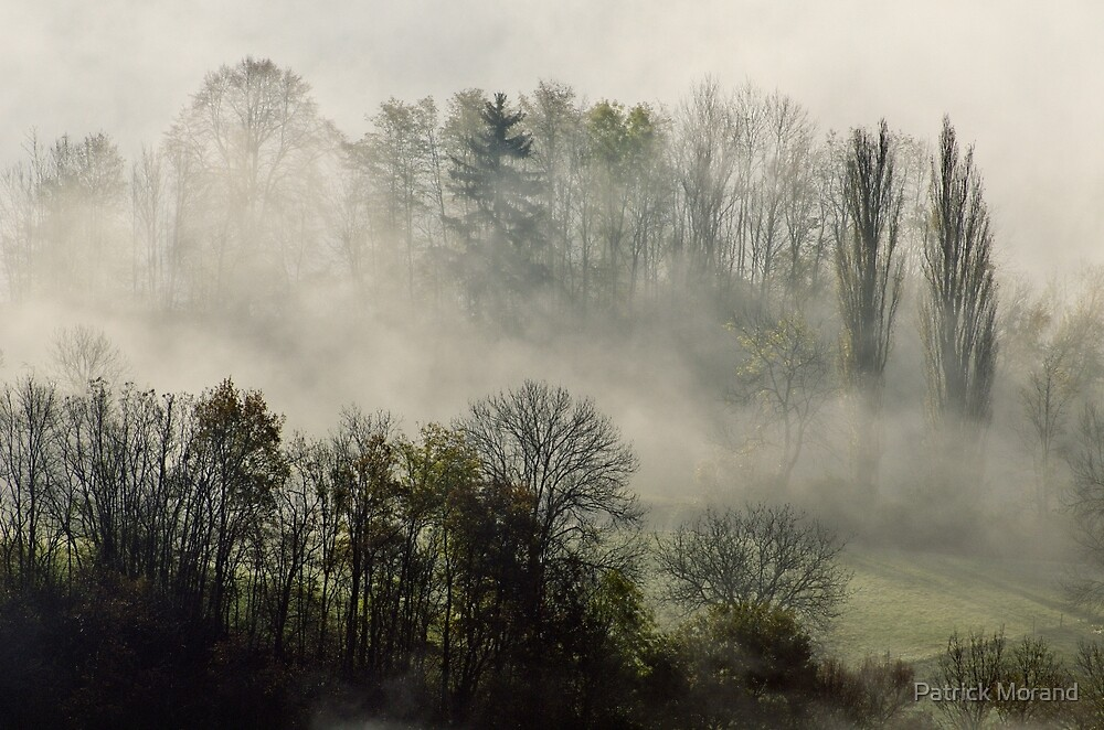 A november morning in the mist by Patrick Morand