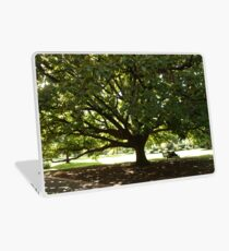 Fitzroy Tree Laptop Skin