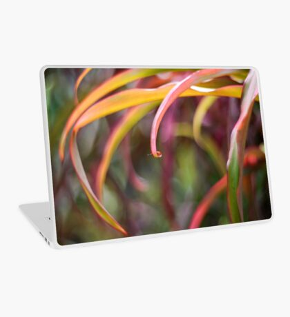 The curl Laptop Skin