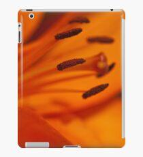 Dervishes Landscape iPad Cover iPad Case/Skin