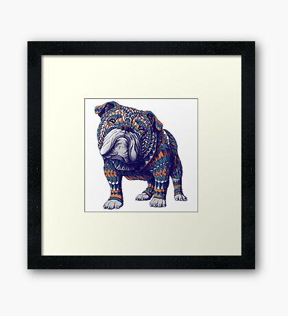English Bulldog (Color Version) Framed Print