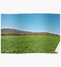 green grass meadow  Poster