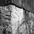 Abandoned Barn by BonnieToll