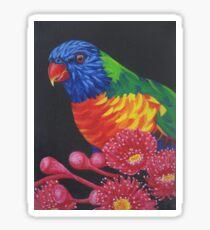 Rainbow Lorikeet Parrot #1 Sticker