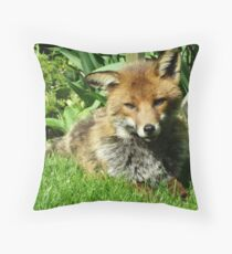 A Trusting Look of Life Throw Pillow