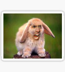 Nicolas Cage/Rabbit Sticker