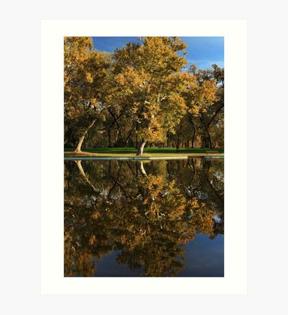 Bidwell Park Reflections Art Print