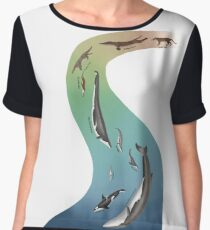 Whale evolution - prehistoric and modern whales Women's Chiffon Top
