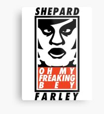 Shepard Farley Metal Print