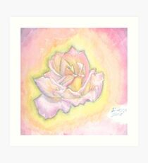 Pastel Colored Rose Art Print