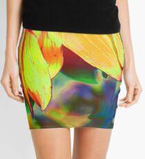 Funky is Fun II Mini Skirt