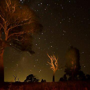 Stars by RainyMaree