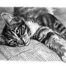 Resting Kitty G064 by schukinart