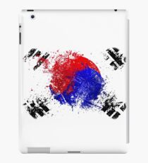 korean flag brush iPad Case/Skin