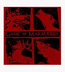 Game of Marauders Photographic Print