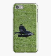Jackdaw Squadron iPhone Case/Skin