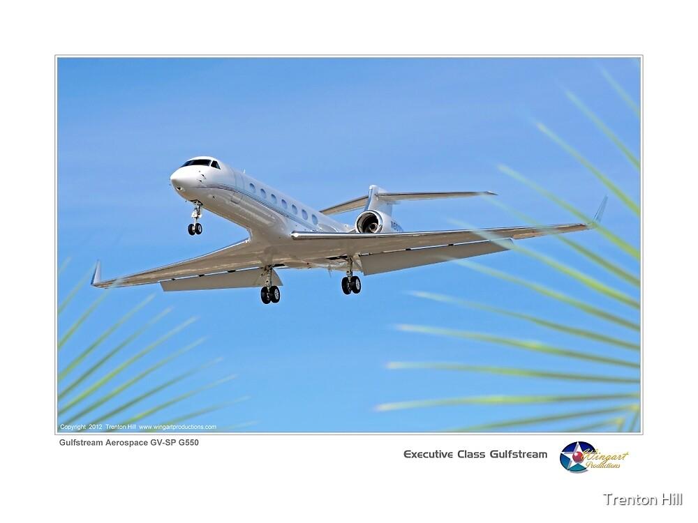 Executive Class Gulfstream by Trenton Hill