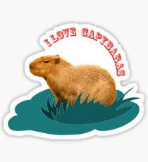 I love capybaras Sticker