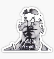 Beach Fossils Clash the Truth Sticker