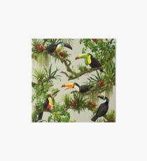 Toucans and bromeliads - canvas background Art Board