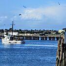 In Port by marilyn diaz