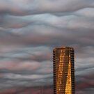 Trump - Vancouver by RobertCharles