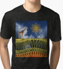 4328 Tri-blend T-Shirt