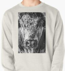 English Longhorn Bull Pullover