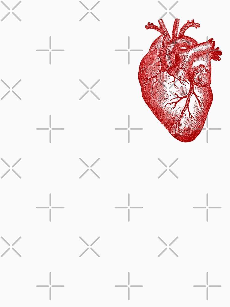 Anatomía del corazón de la vendimia de StilleSkygger