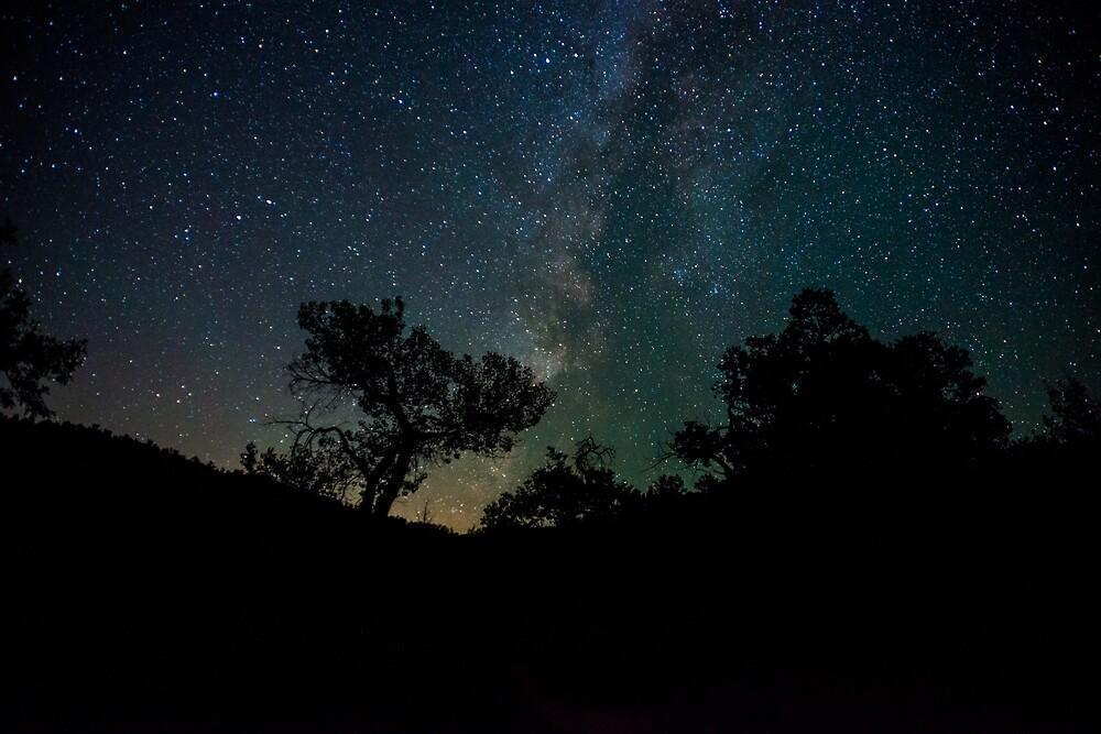 Milky Way Over La Verkin Creek by Nathan Gross