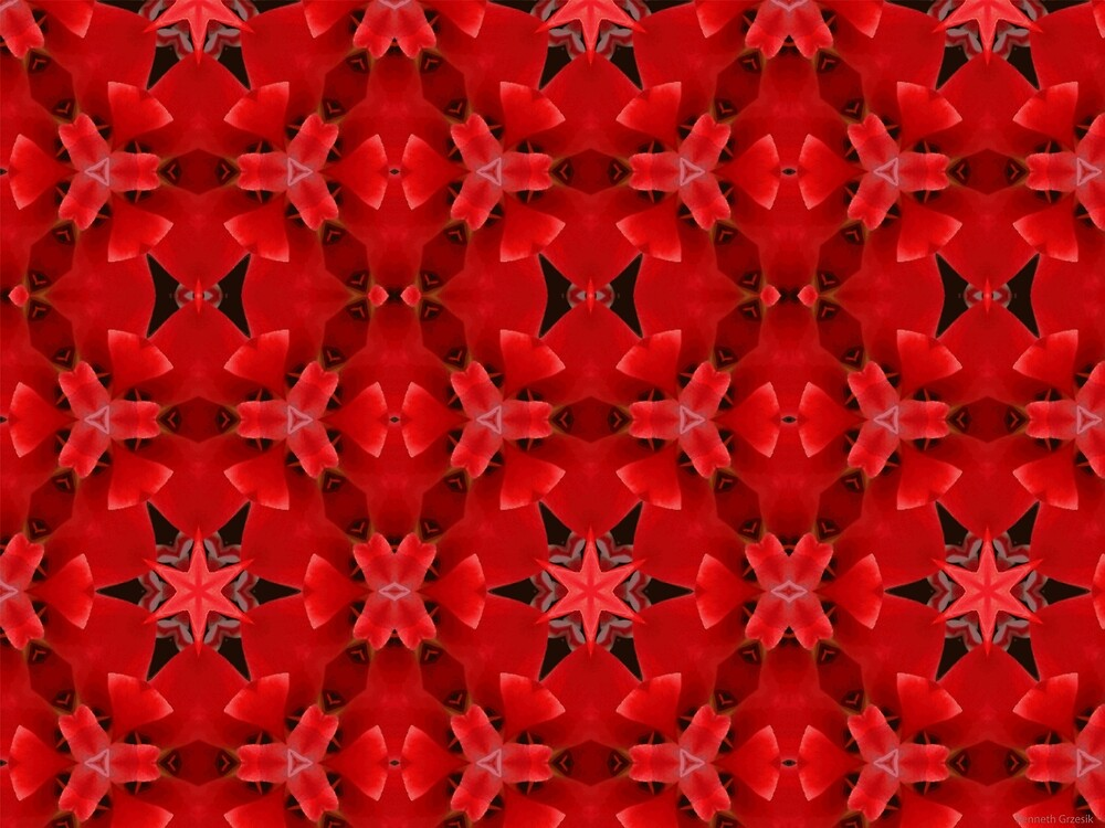 Kaleidoscope Geometry Patterns From Nature 6 by Kenneth Grzesik