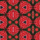 Kaleidoscope Geometry Patterns From Nature 2 by Kenneth Grzesik
